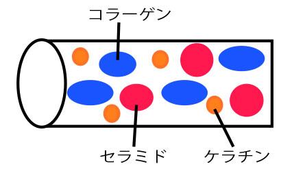 ラメラ液晶構造